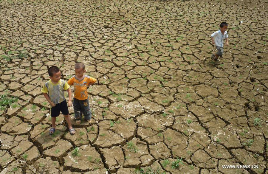 Sustained drought affects Baise City of Guangxi