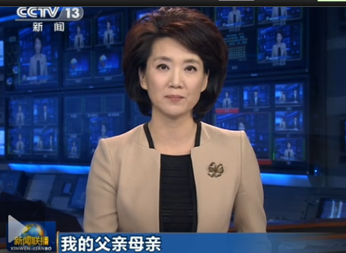 China's top news program airs search notice for missing mother